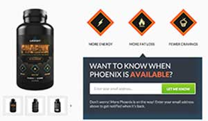 Legion Phoenix website