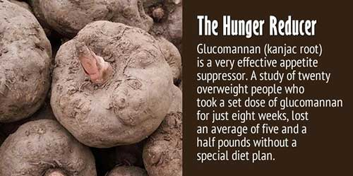 glucomannan appetite suppressor