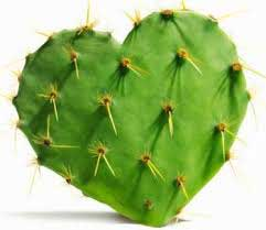 Nopal appetite suppressant