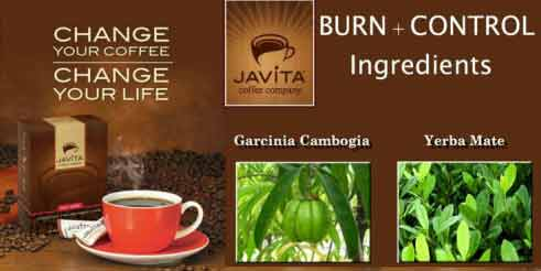 Javita Burn ingredients